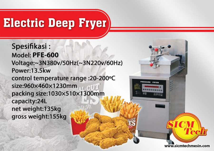 Electric Deep Fryer PFE600