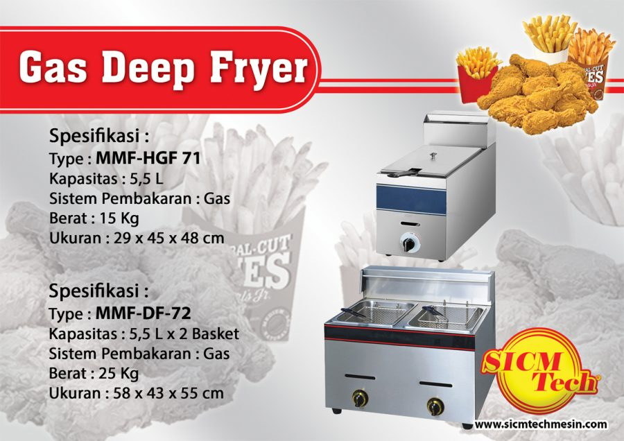 Gas Deep Fryer copy